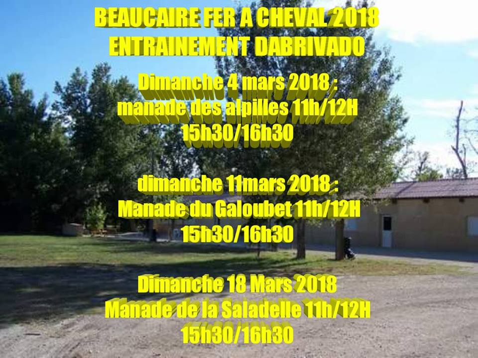BEAUCAIRE FER A CHEVAL - Entrainements abrivados