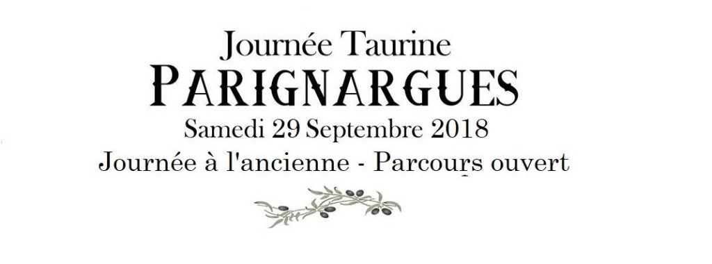 PARIGNARGUES - Journée taurine