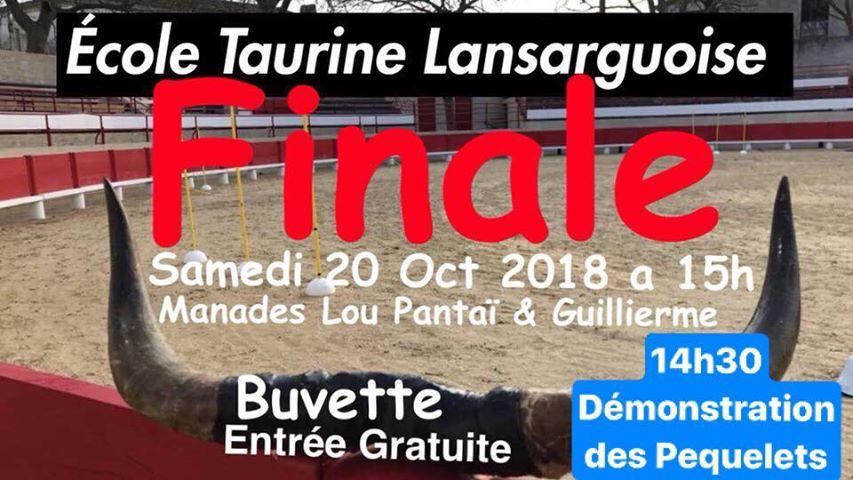 LANSARGUES - Finale école de raseteur