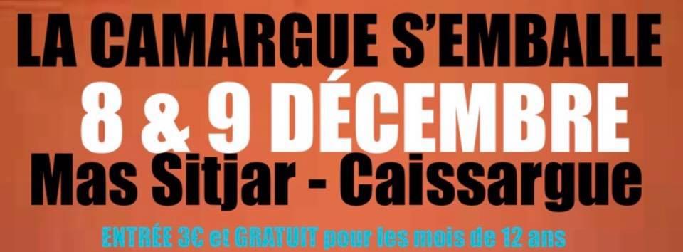 MAS SITJAR // La Camargue s'emballe