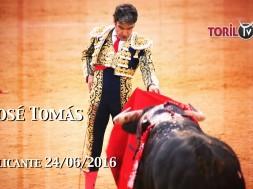 José Tomas Alicante