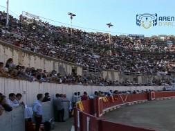 corrida-concours-dimanche-apres-midi