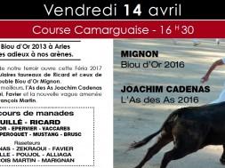 course camarguaise arles