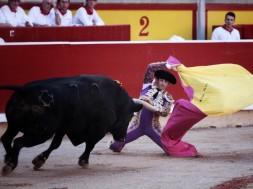 corrida pamplona 9 juillet