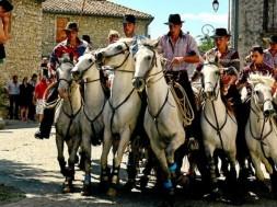 a-quissac-les-chevaux-et-les-taureaux-sont-les-rois-de-la_1016111_1000x500