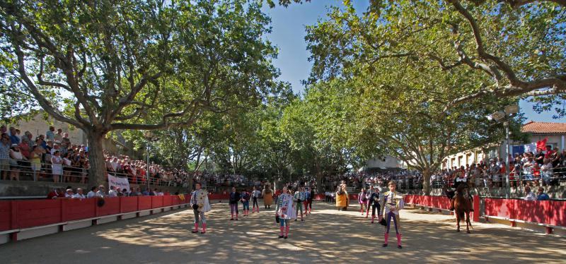 Une victoire de plus contre le mouvement anti corrida qui demandait l'interdiction des deux novilladas programmées dans le cadre de la 4e édition de la Féria de la Jouvenço
