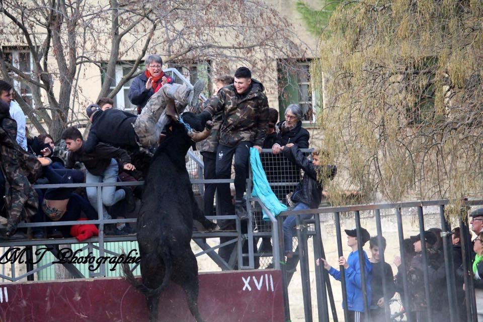 AGENDA – Les manifestations taurines du 14 et 15 décembre 2019