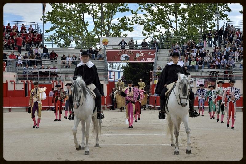 SAINT-MARTIN-DE-CRAU – Une feria prometteuse