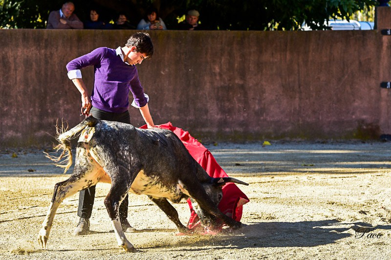 La Fiesta Campera de Solalito.. (photo P.Colleoni)