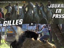 stgilles 10 02 2018