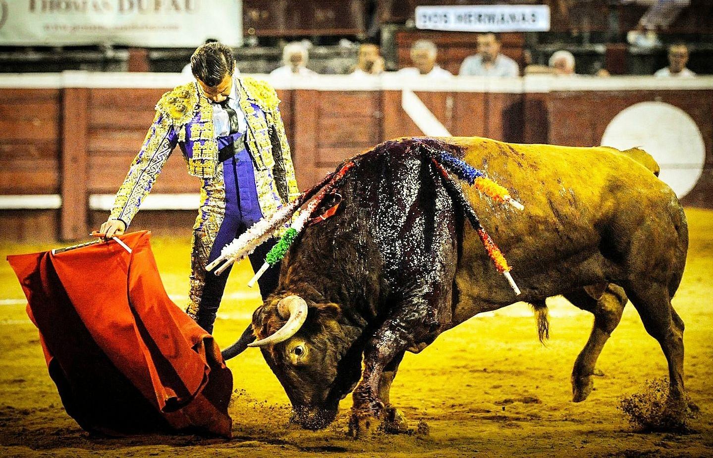 Mathieu Guillon EL Monteño met un terme à sa carrière de matador de toros