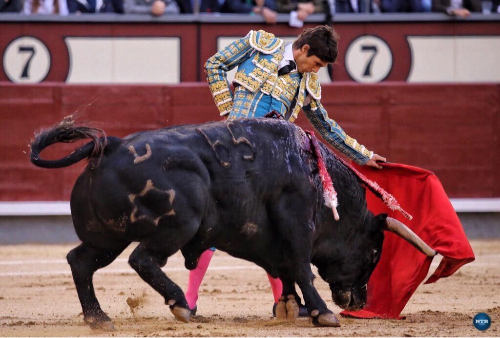 MADRID – Oreille pour Castella et faena sérieuse de Roca Rey