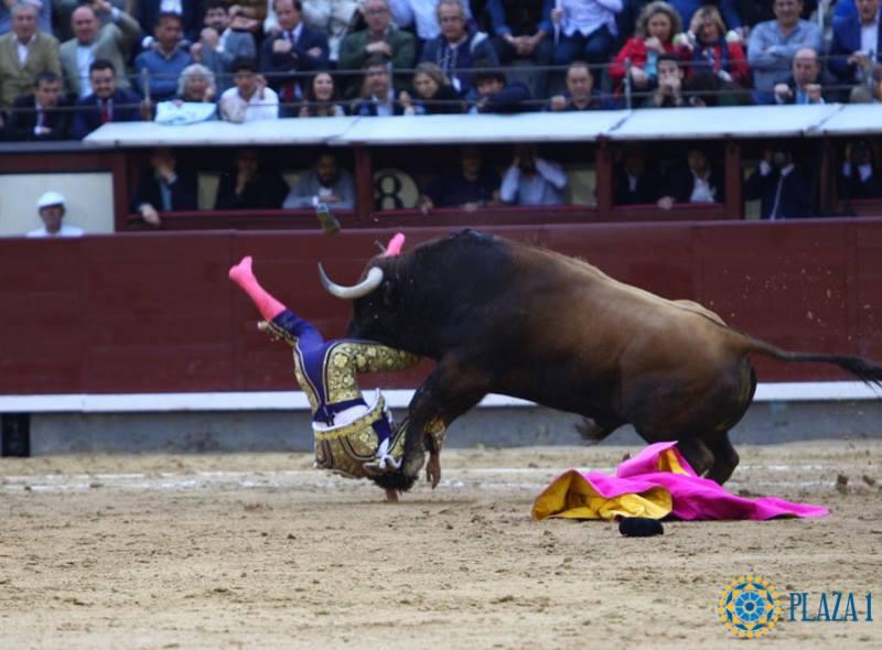 Sébastien Castella a toréé à Madrid avec deux côtes cassées