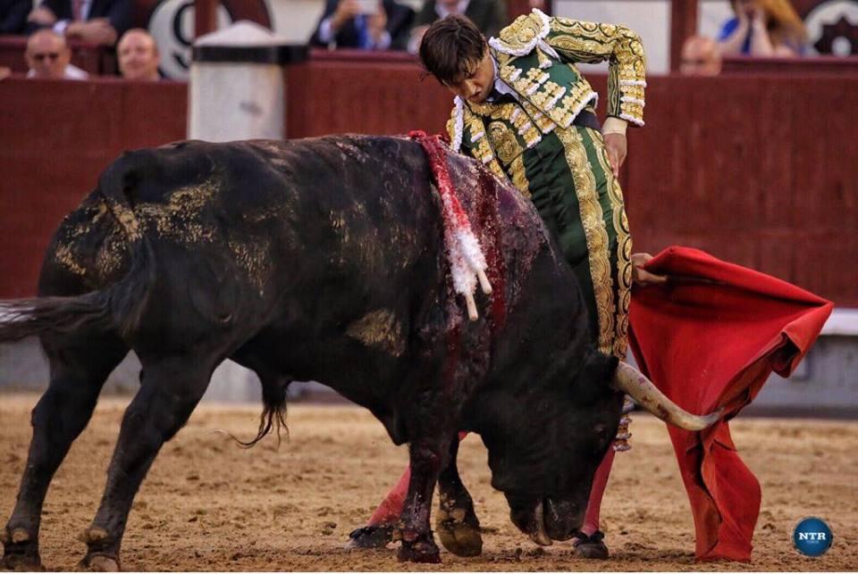 MADRID – ANDRES ROCA REY sauve une fade soirée sur le fil…