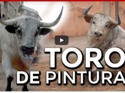 toros de pintura
