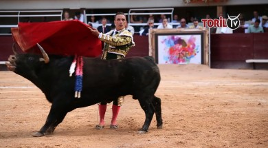 Resume corrida dimanche soir istres 2018