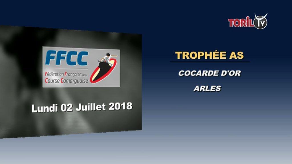 Ffcc Calendrier Des Courses Camarguaises.Calendrier Courses Camarguaises 29 Juin Au 03 Juillet 2018