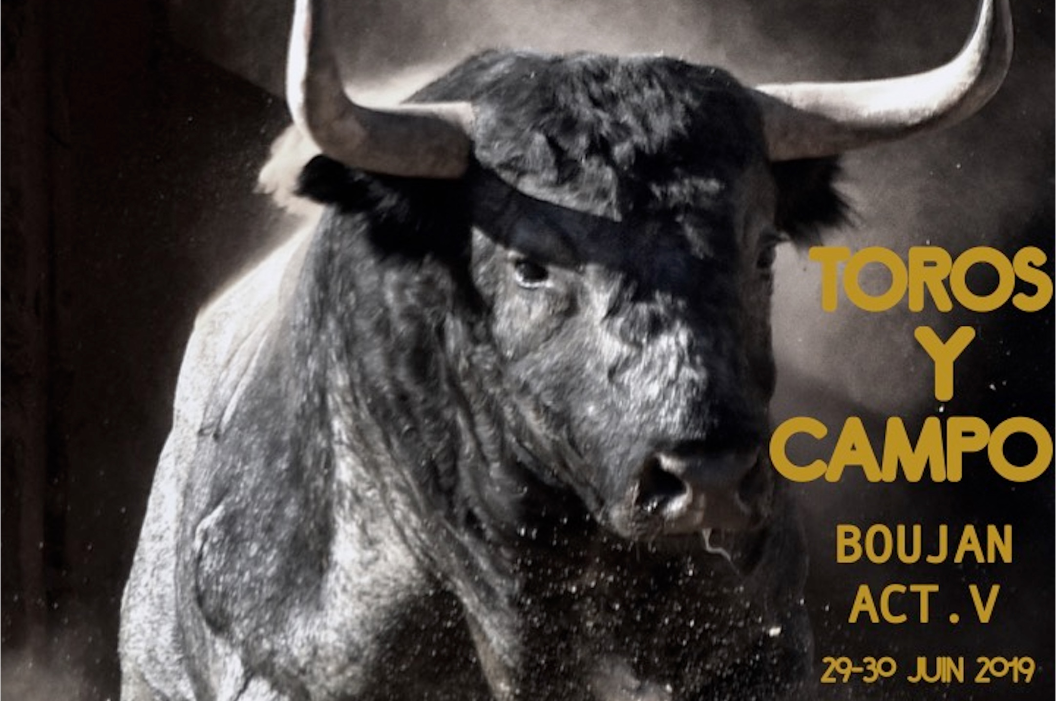 BOUJAN // Les cartels et le programme de TOROS Y CAMPO BOUJAN 2019
