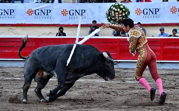 "Irapuato (México) (17/11/2018) – EL ZAPATA en grand triomphateur, Fermín Espinosa ""Armillita IV"" et Andy Cartagena seulement une oreille"