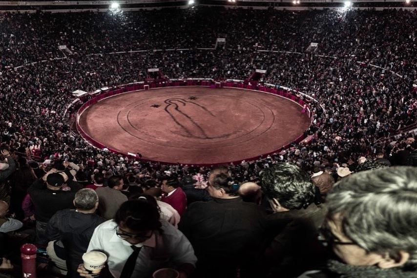 VIDEO // Le clip de la Corrida Guadalupana de MEXICO (12/12/2018)