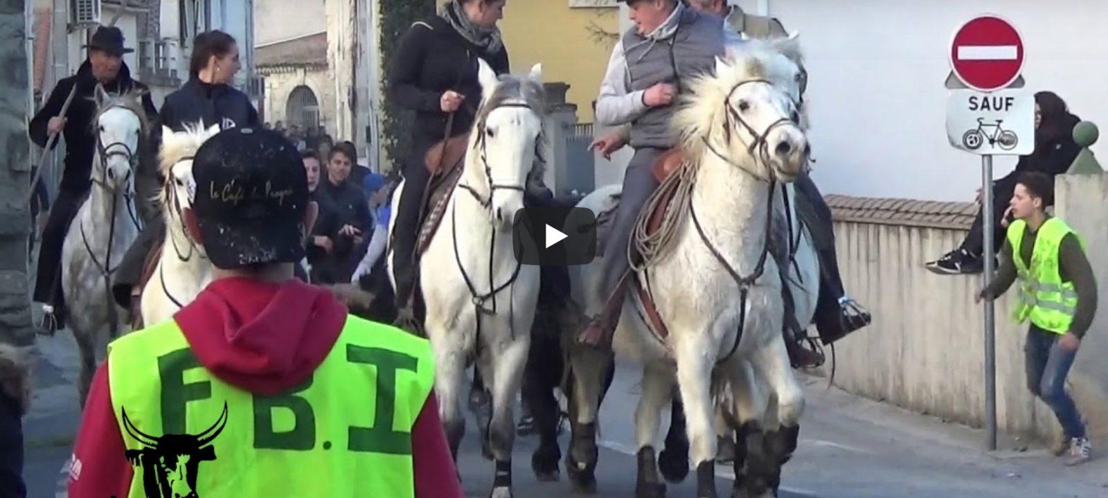 LUNEL VIEL // Retour en vidéo sur la journée taurine