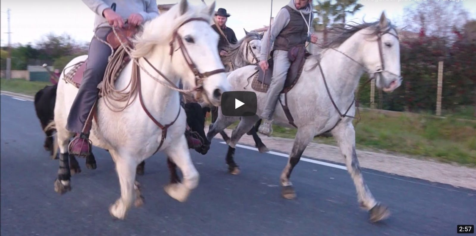 VALERGUES (09/02/2019) – Retour en vidéo sur le Festival de bandido