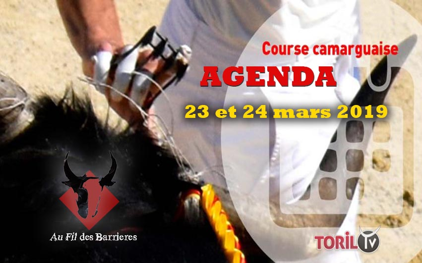 AU FIL DES BARRIERES – L'Agenda Course Camarguaise – 23 et 24 mars 2019