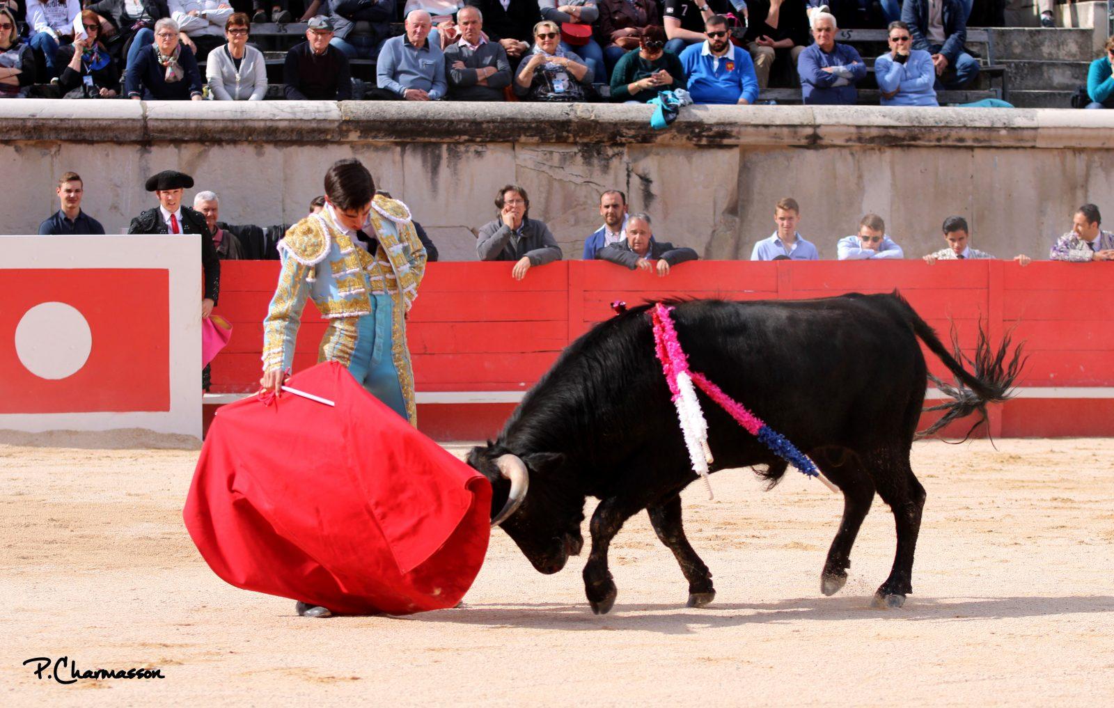 SOLALITO domine le troisième tentadero qualificatif de l'Alfarero de Plata à Villaseca de la Sagra
