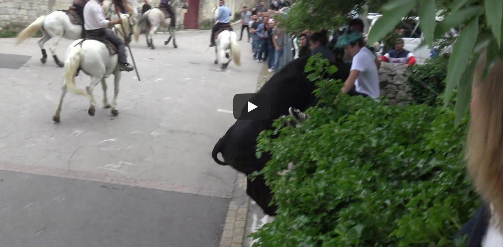SAUSSINES (24/05/2019) – Retour en vidéo sur la bandido