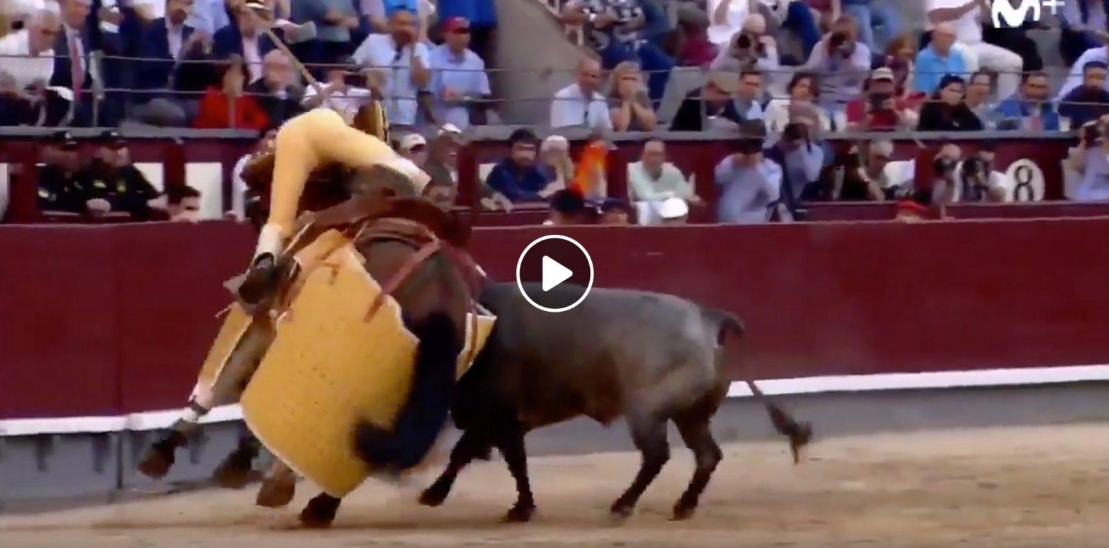 """VIDEO // """"Fogoso"""" de La Quinta y Juan Francisco Peña, une rencontre pour un bon tercio de varas"""