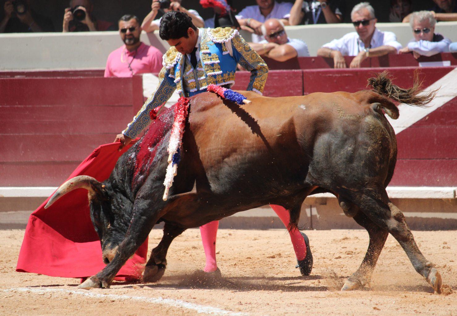 ISTRES (16-06-2019) HECTOR GUTIERREZ séduit et gagne son ticket pour La Mexico