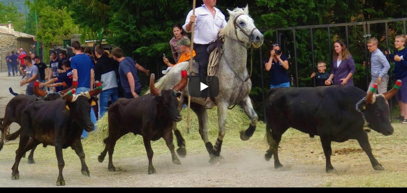 LES PLANS (09/06/2019) – Retour en vidéo sur la bandido 20 taureaux
