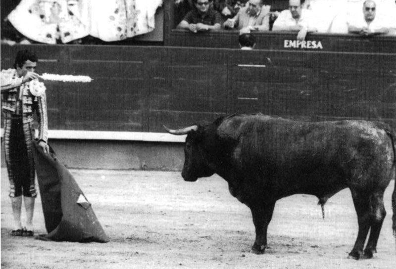 Il y a 37 ans, Belador et Victorino Martin entrent pour toujours dans l'histoire de Las Ventas
