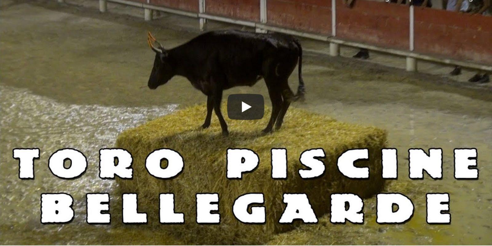BELLEGARDE Toro Piscine 03-07-2019