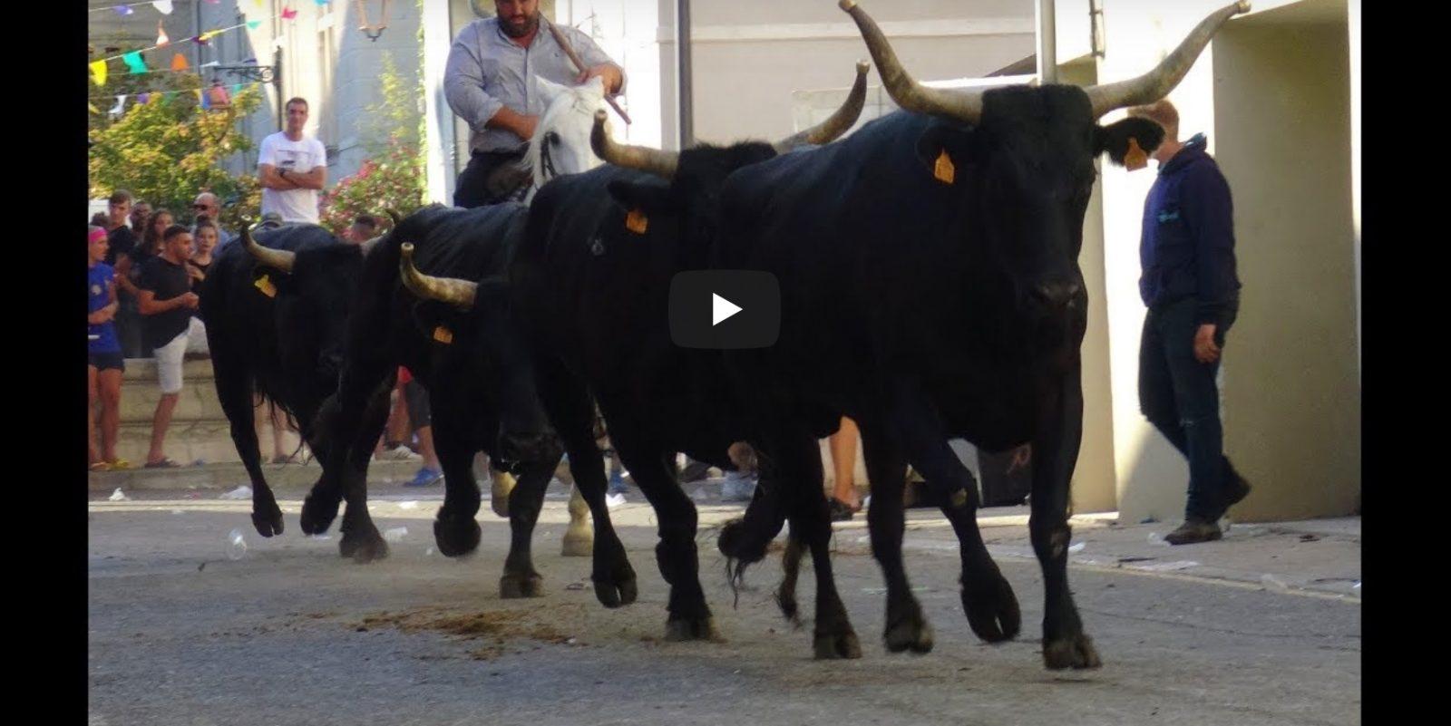 CAVEIRAC (12/07/2019) – Retour en vidéo sur le FESTIVAL DE BANDIDO