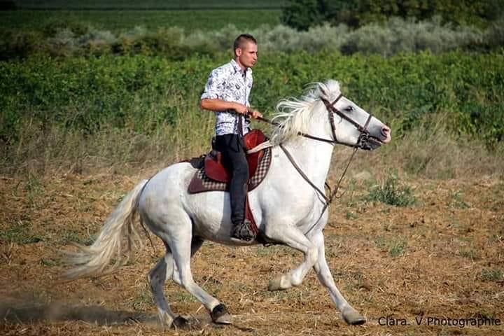 La Camargue pleure l'un de ses enfants – Hommage à Jordan Boiselle victime d'un accident de cheval