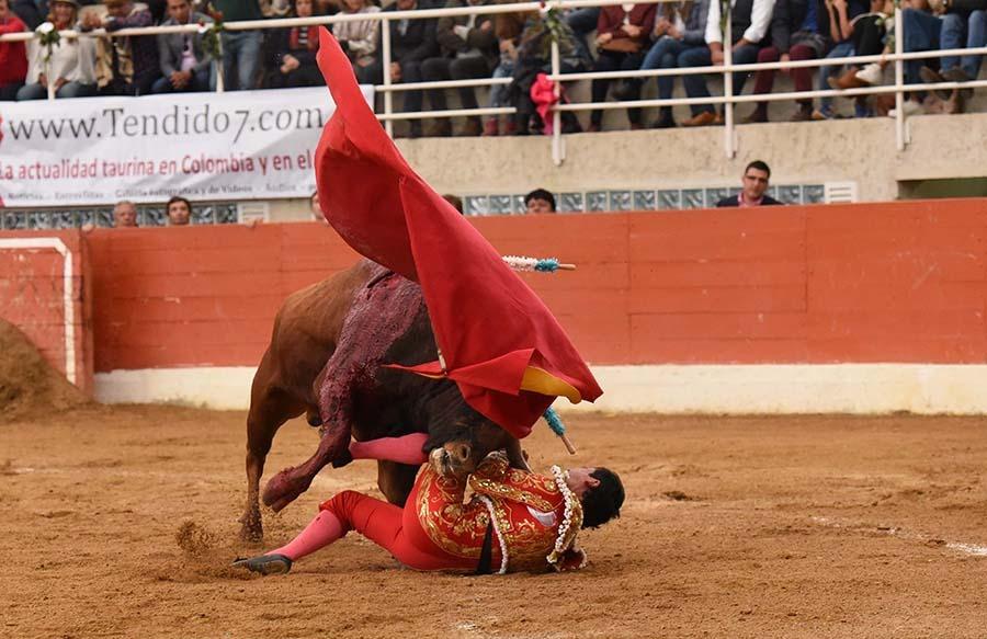 Grave blessure pour le torero colombien Moreno Muñoz.