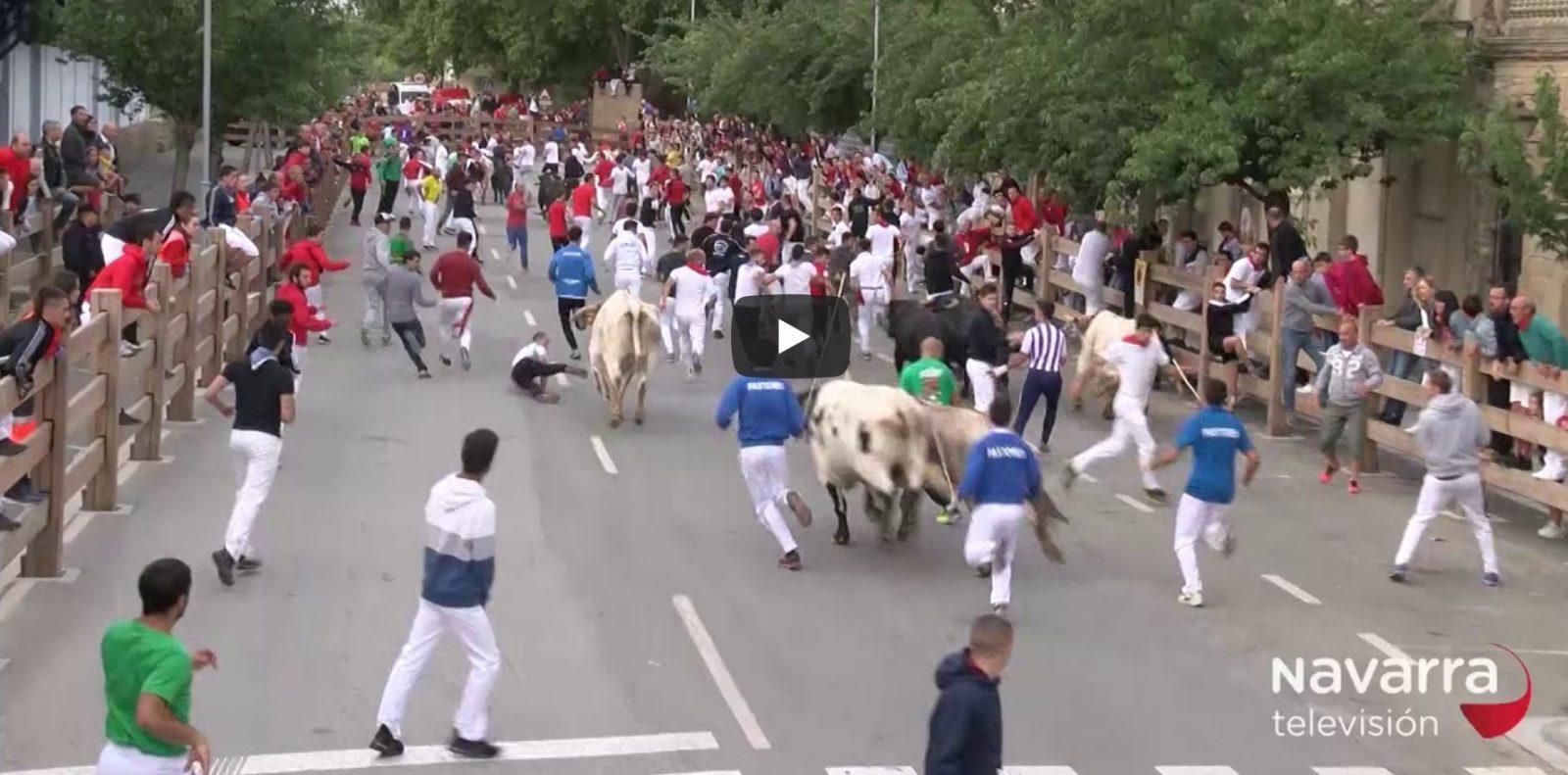 VIDEO // Encierro del Pilon de Falces et TAFALLA // Retour en vidéo sur les encierros du week end