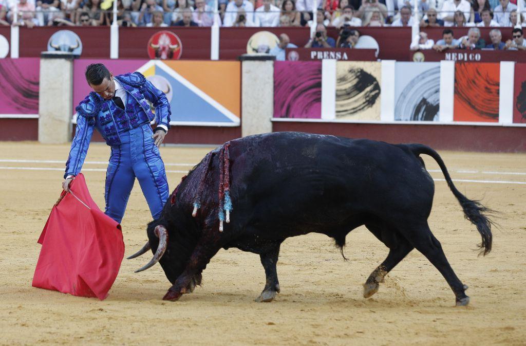 JOSE MARIA MANZANARES, un torero retrouvé…