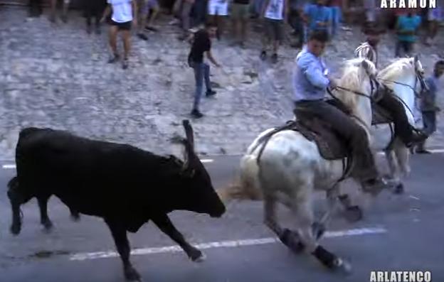 ARAMON (01-09-2019) Retour vidéo sur la bandido de taureaux neufs