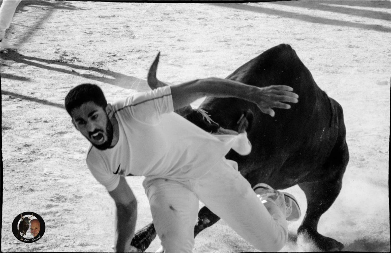 Joachim Cadenas : «Je vis pour que vivent la course camarguaise et les taureaux…»