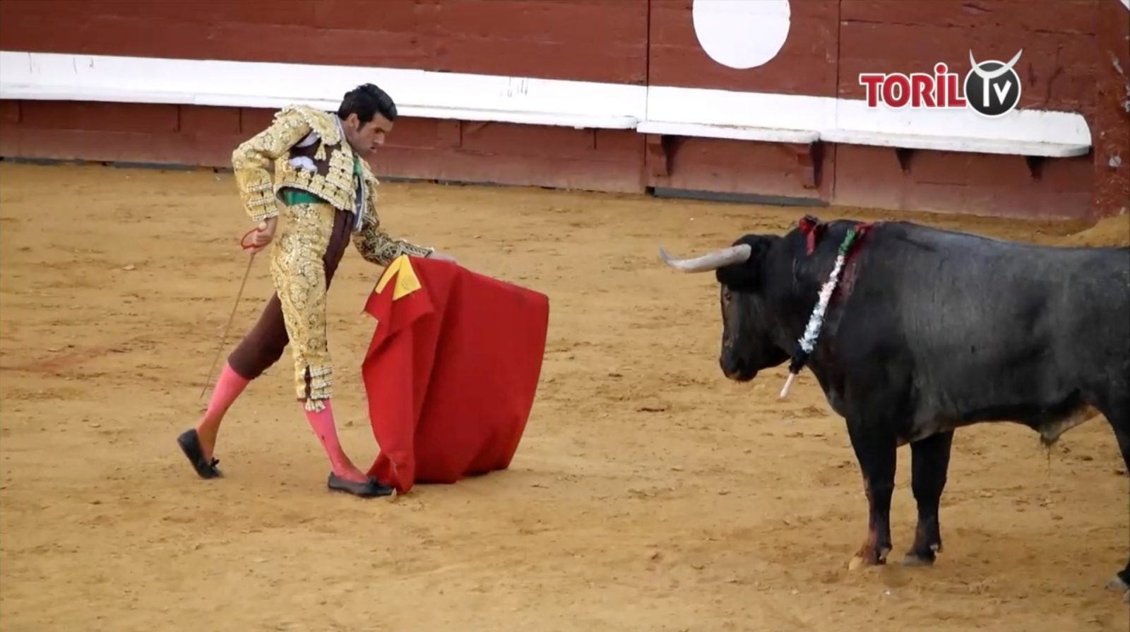 DAX (07/09/2019) – Le résumé vidéo du seul contre six d'Emilio de Justo