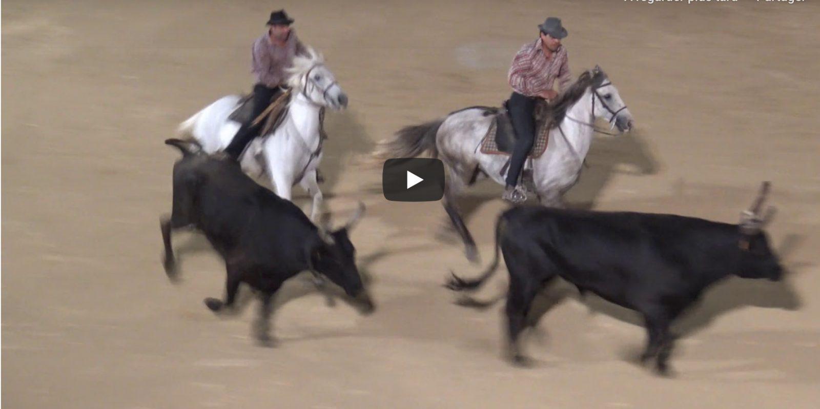 GRAU DU ROI (13/09/2019) – Retour en vidéo sur les OLYMPIADES