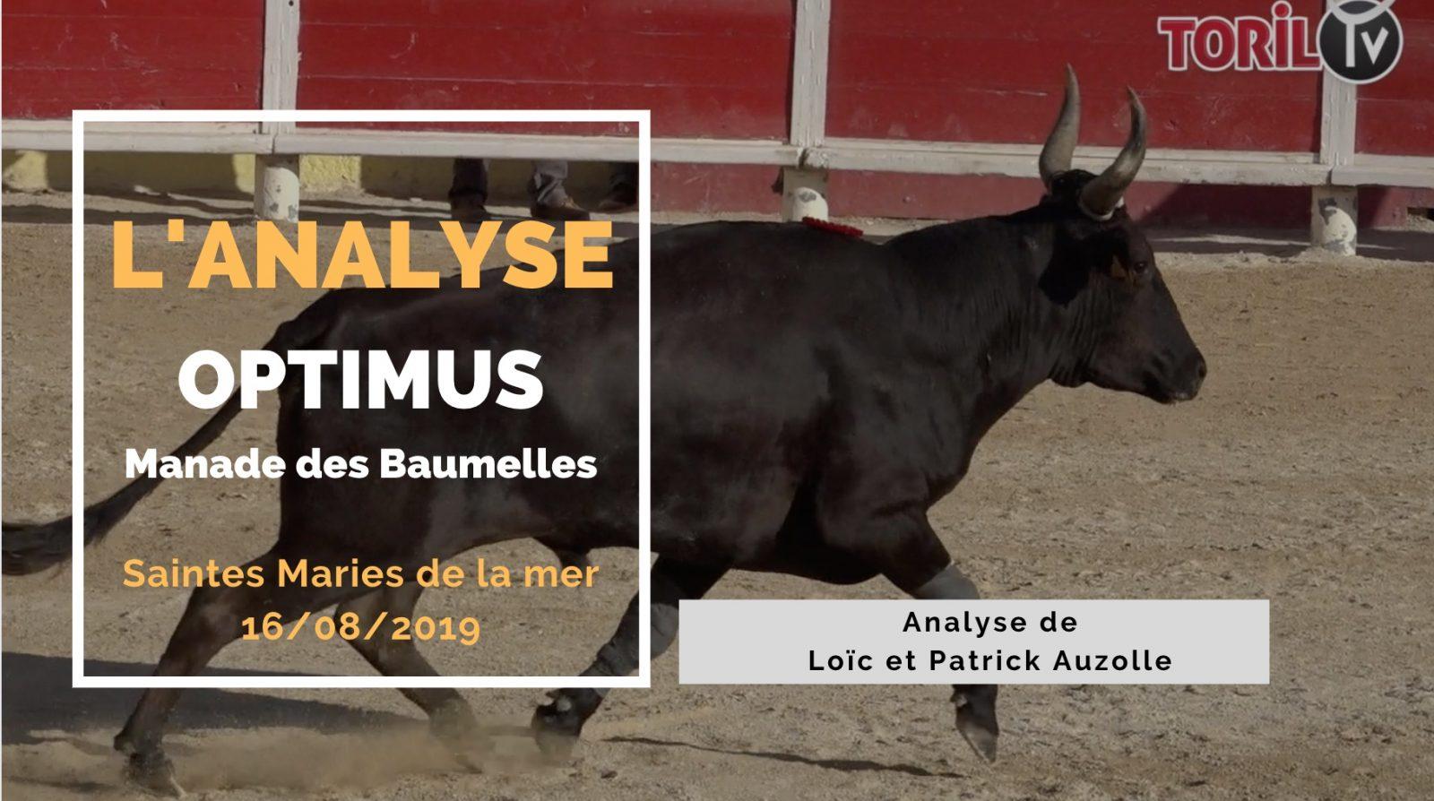 L'ANALYSE : Optimus (Baumelles) – Saintes Maries de la Mer (16/08/2019)