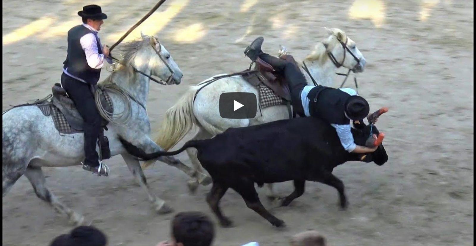 BELLEGARDE (26/10/2019) – Retour en vidéo sur les OLYMPIADES + BANDIDO