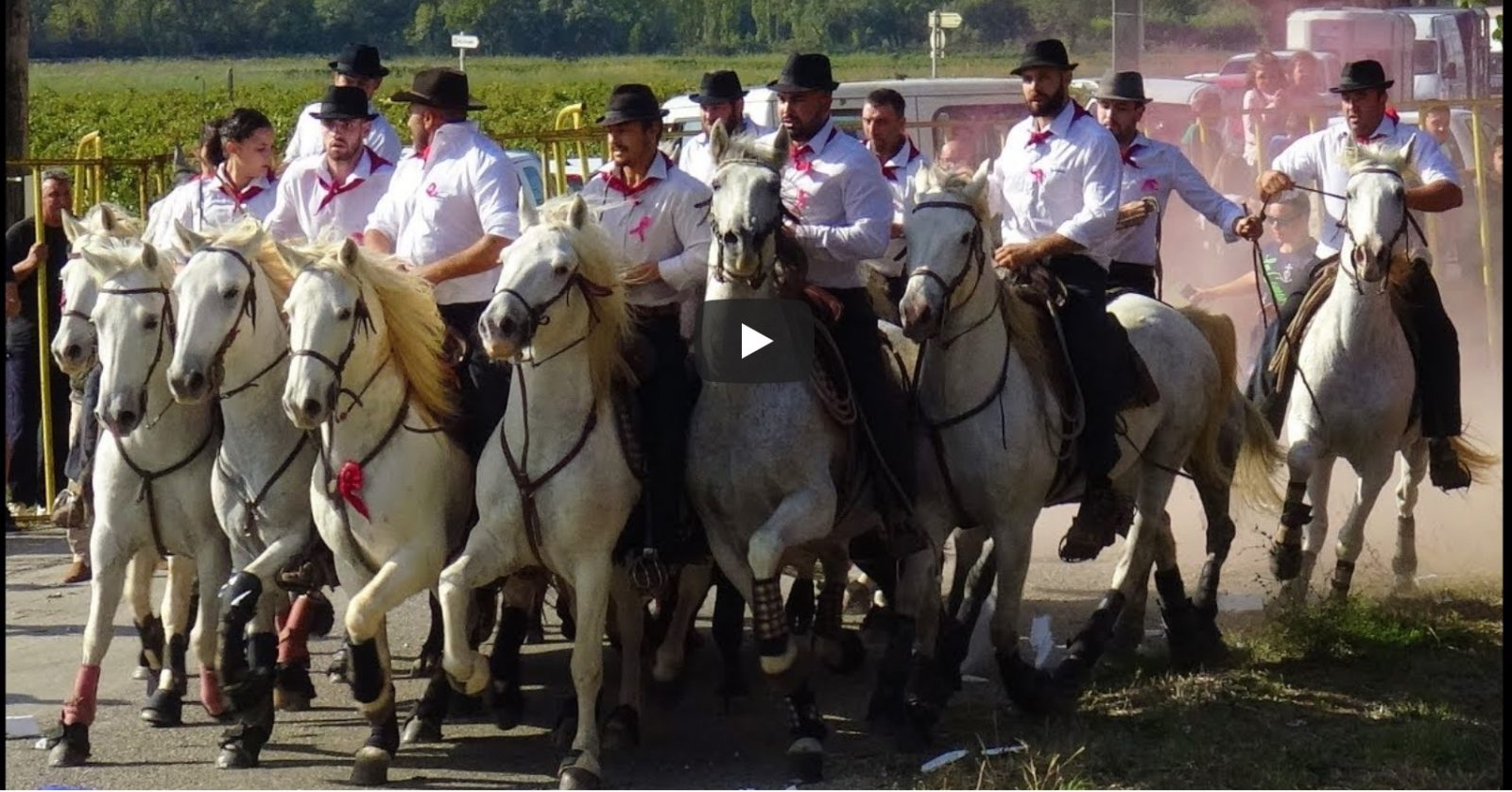BELLEGARDE (13/10/2019) – Retour en vidéo sur la COURSE – ABRIVADO LONGUE – BANDIDO
