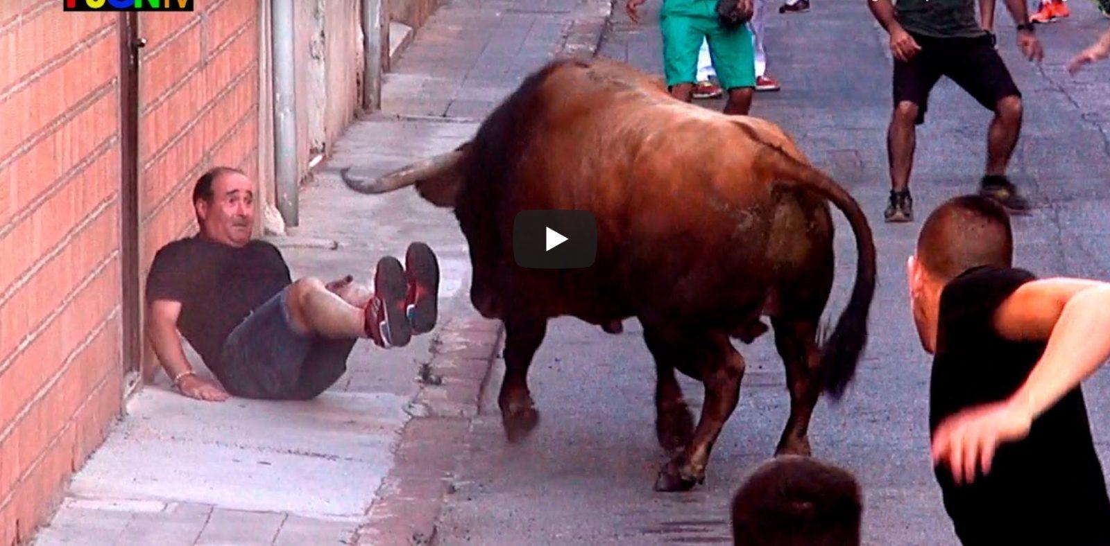 VIDEO DU NET // 3 Toros Fiestas Barrio Sant Joan – Nules (Castellon) Bous Al Carrer
