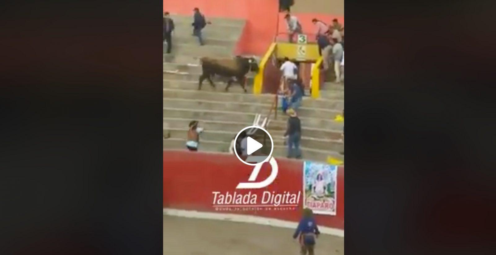 VIDEO DU NET // Un toro saute dans les gradins et blesse grièvement une femme