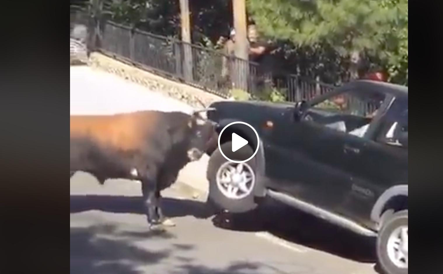 VIDEO DU NET // Impressionnante force du toro contre une voiture
