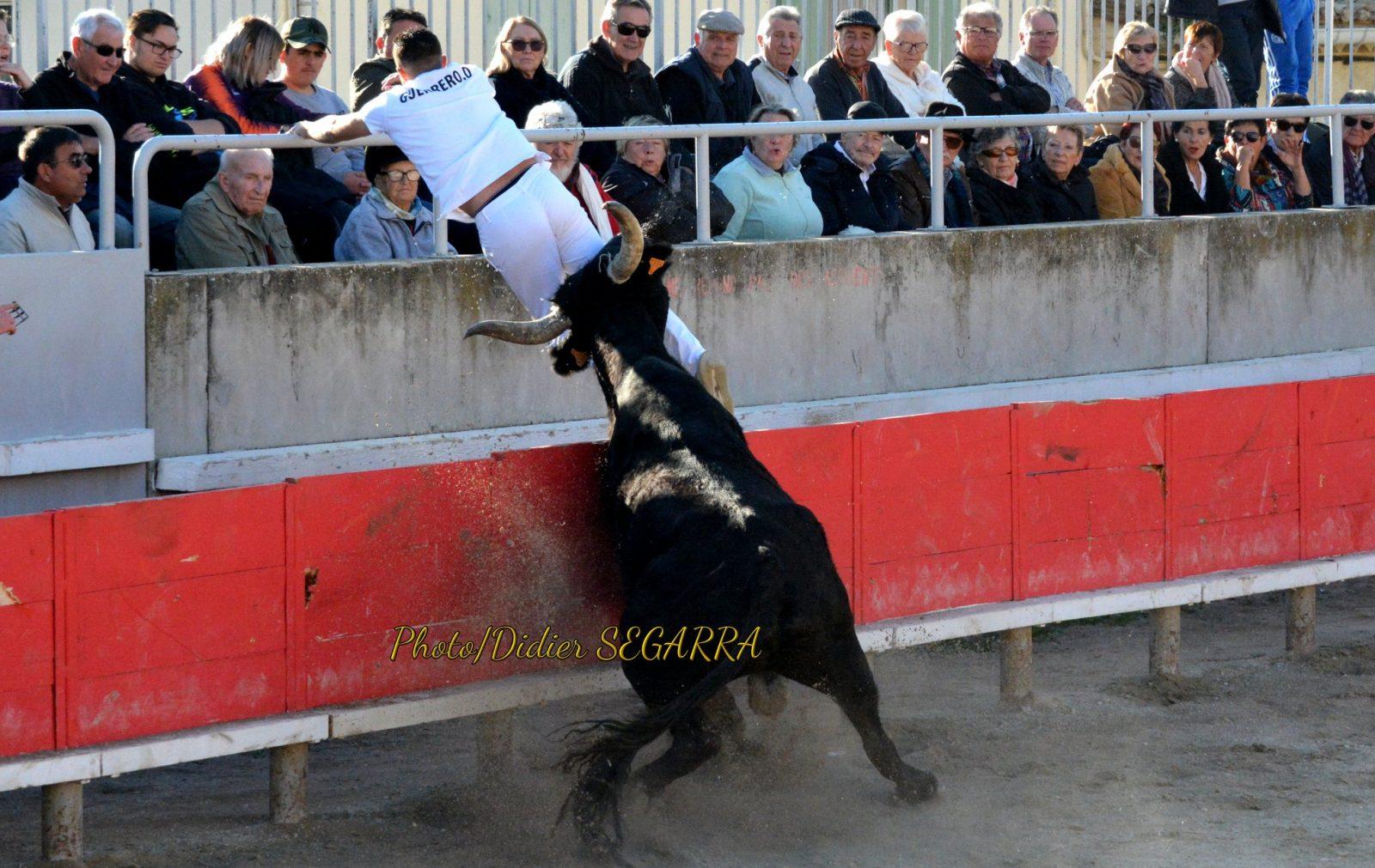 GALLARGUES LE MONTUEUX (11/11/2019) – Le résumé vidéo de la course AVENIR – Espoirs de la manade Fanfonne Guillierme